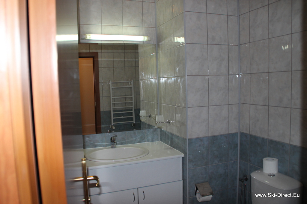 One Bedroom Apartment For Rent In Borovets Bulgaria Hotel Flora Pic 6 Ski School In Borovets